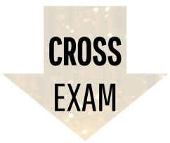 Cross Exam Icon